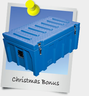 eNewsletter December 2012 - Christmas Bonus